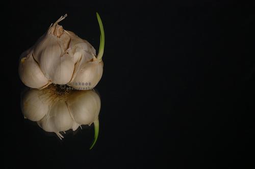 garlic in reflection